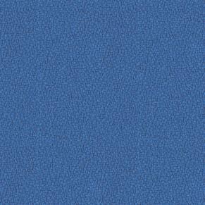 Bluefield YS021